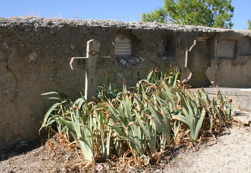 Fosa común de Mediana de Aragón 1