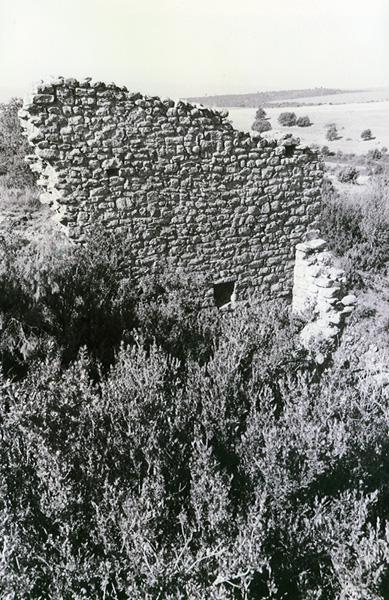 Restos del muro