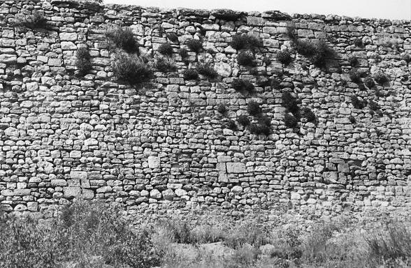 Muralla. Aparejo y aspilleras. 1997
