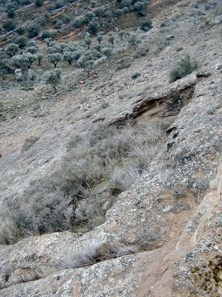 Restos de construcciones en la ladera