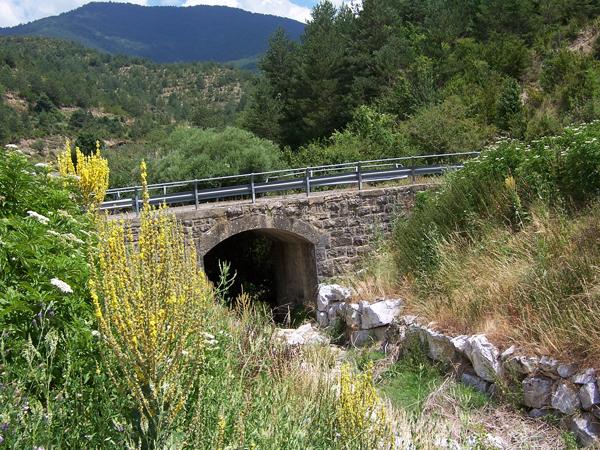 Puente de Changalé