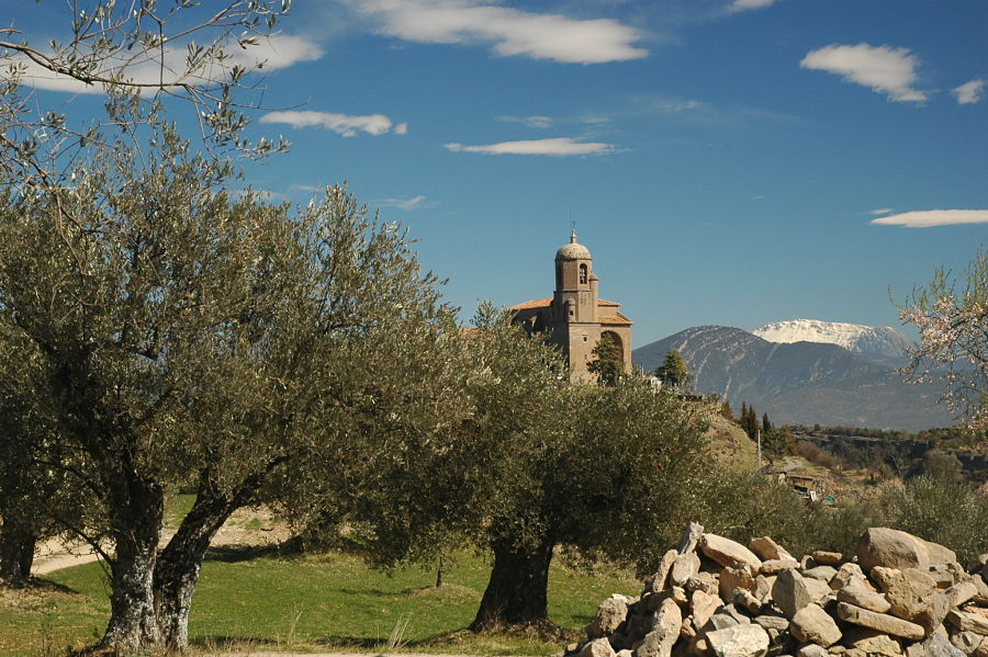 Olivos e iglesia desde el molino de casa Falceto, en Olsón