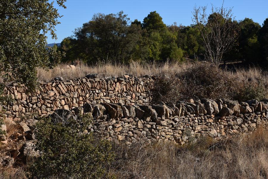 Camino de ganado en las serranías turolenses. Monroyo