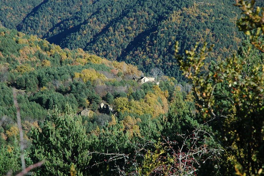 Repoblación forestal y despoblación: Geré, en el valle de la Solana